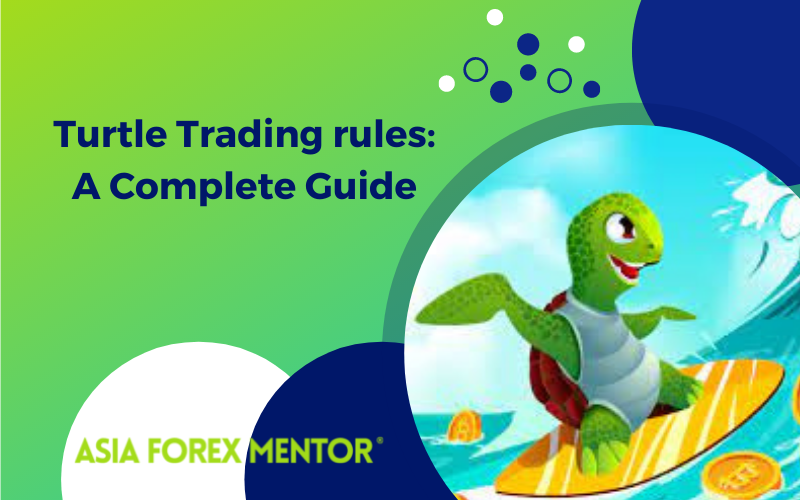 Turtle Trading Rules