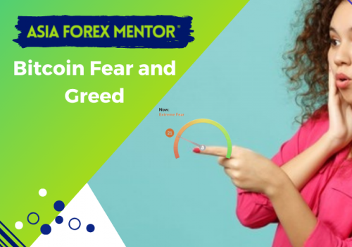 How do you use Bitcoin Fear and Greed Index